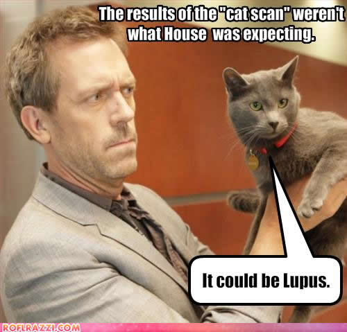 celebrity-pictures-hugh-laurie-cat-scan